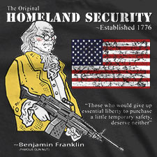 essay on homeland security