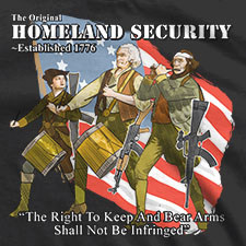 THE ORIGINAL HOMELAND SECURITY THE SPIRIT OF 76